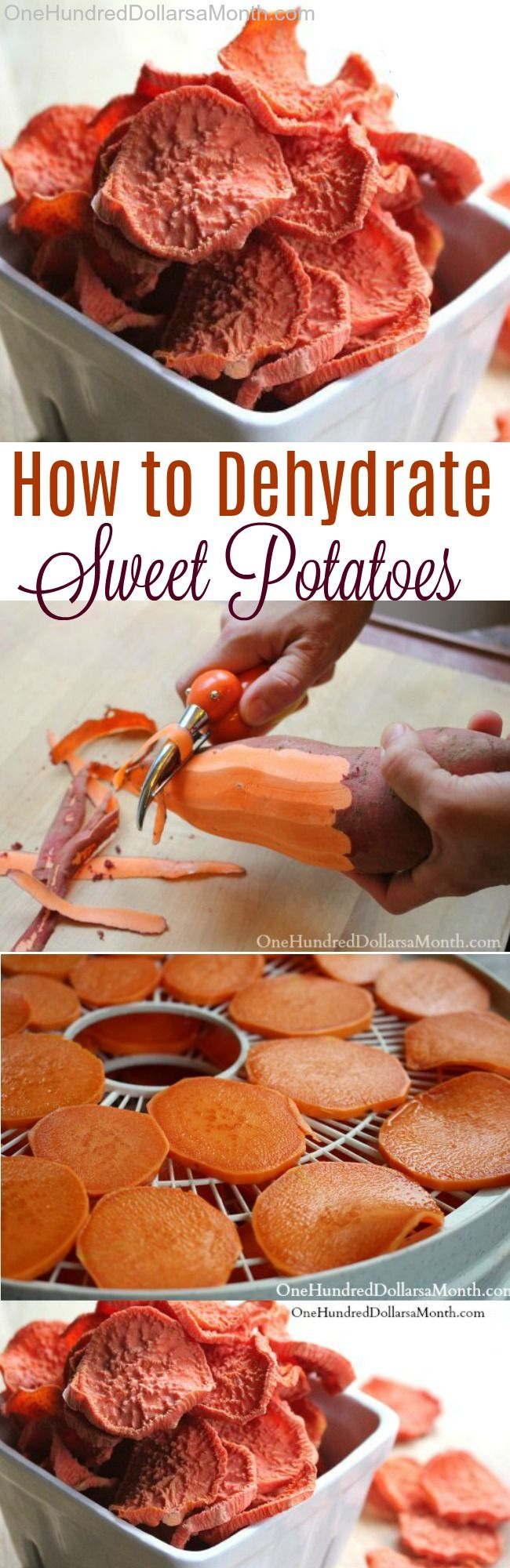 423 best dehydrator recipes images on pinterest dog recipes dog how to dehydrate sweet potatoes dehydrated food recipescanning forumfinder Images