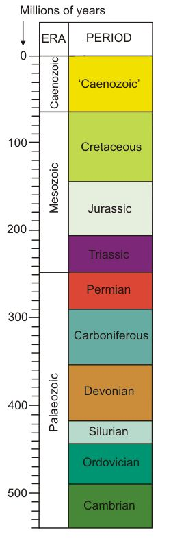 Geological Time Scale--what was common in each period