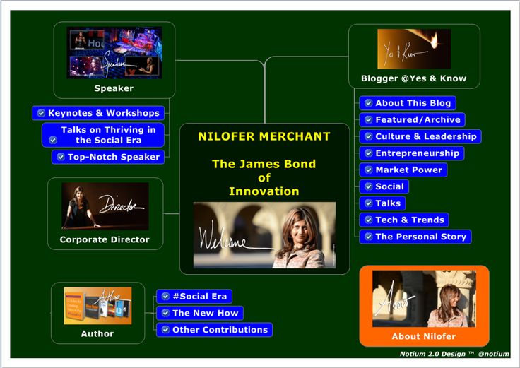 TOUCH & DIVE DEEPER: Nilofer Merchant - The James Bond of Innovation by Notium Gallery of Rich Media CARTA 2.0 Maps