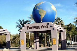 Next tourist destination is Phoenix Arizona , many interesting tourist attractions in Phoenix Arizona. There are plenty of worthy tourist a...
