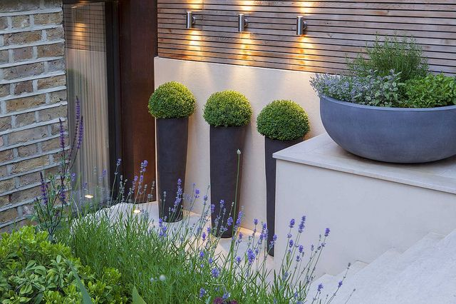 Tall stoneware planters on the lower terrace lit from above, planted with Buxus globes