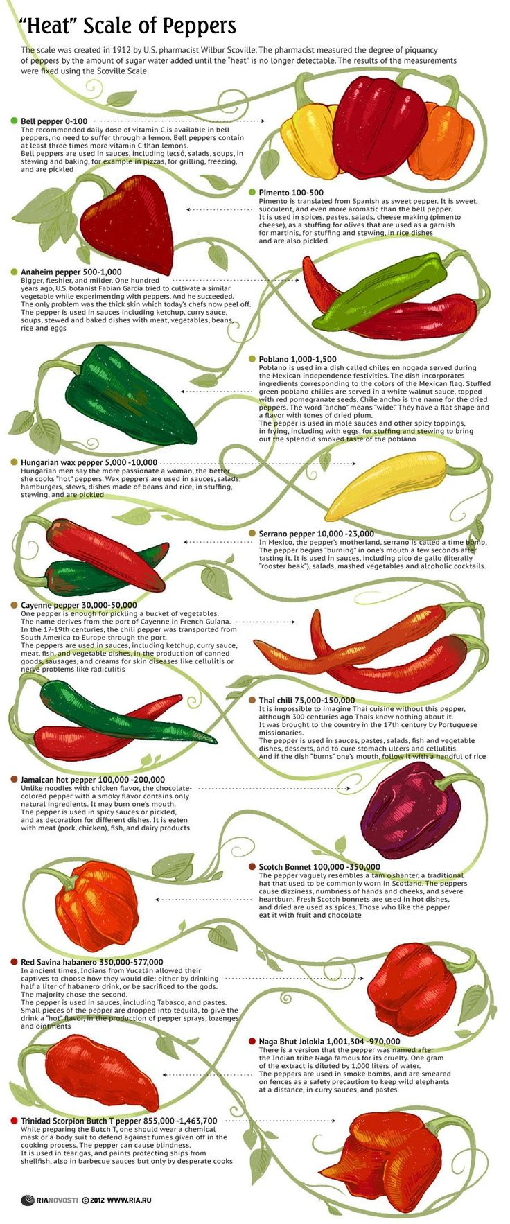"""HEAT"" SCALE OF PEPPERS – we all stare at the bins of peppers afraid to venture past mild-mannered bells, simply because we have no idea if we're about to seriously sear someone in the heat department. Thanks to this handy chart, now we know – the scorpian butch T is a pepper to fear! Don't you think the name might have something to do with it? Seriously, one is advised to where a mask and body suit to defend against fumes! Yikes!"