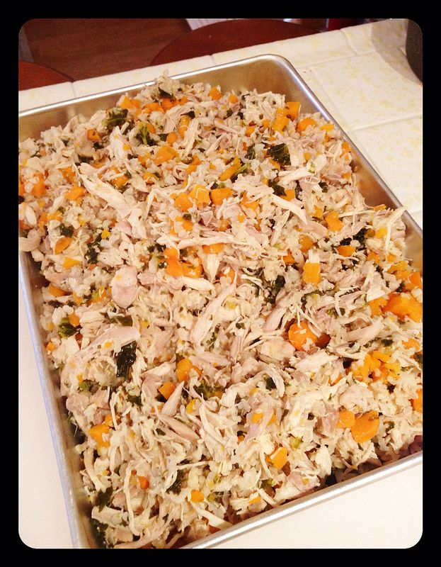 Dog Food Homemade Shredded Chicken I Use Breast And