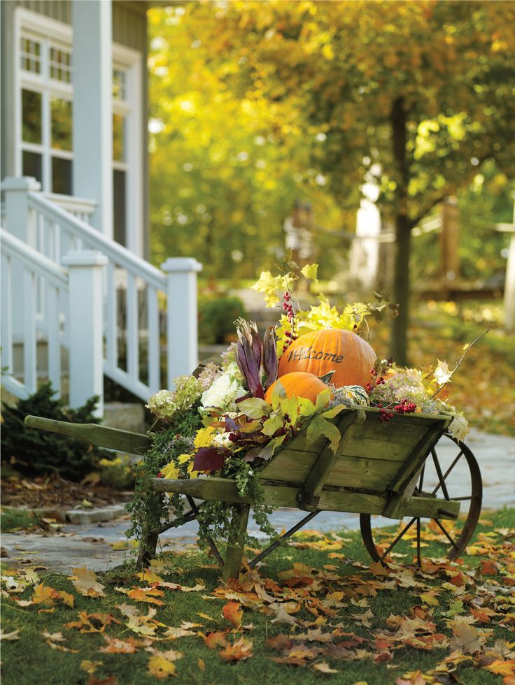 Discover the Fresh Trends to help make your home stand out  this #Fall