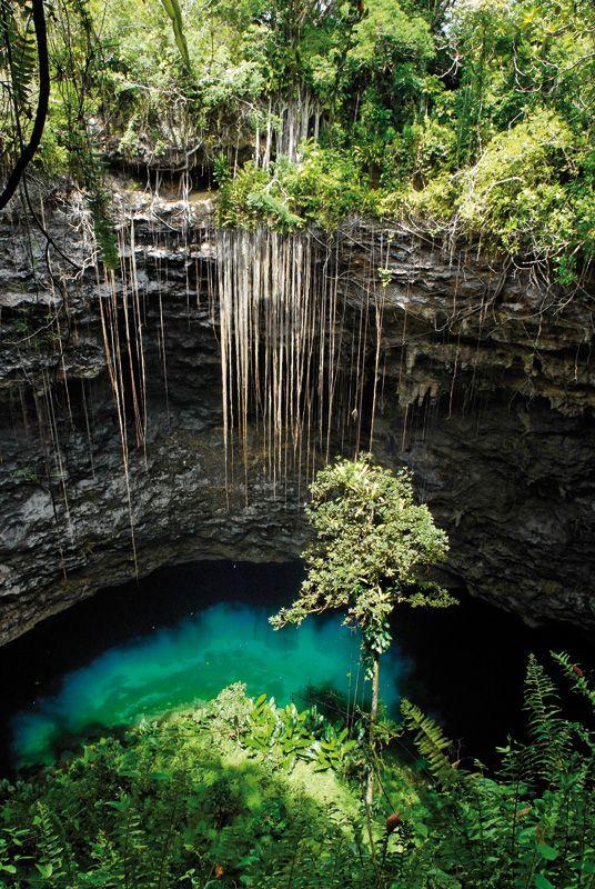Trou de Bone sinkhole in Mare Island, New Caledonia (via ultramarina.com).