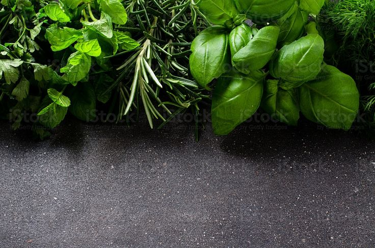 Herbs on dark background royalty-free stock photo