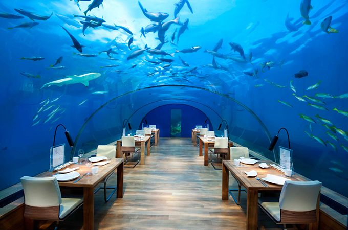 "Ithaa Undersea Restaurant was rated ""the most beautiful restaurant in the world"" by the New York Daily News in 2014, photo: (c) 2015 Conrad Hotels & Resorts"