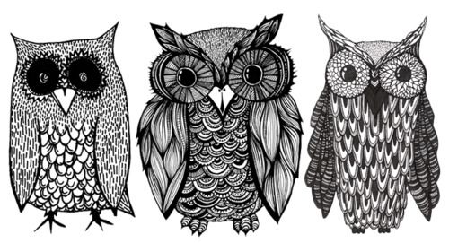 owl texture- maybe scratch art