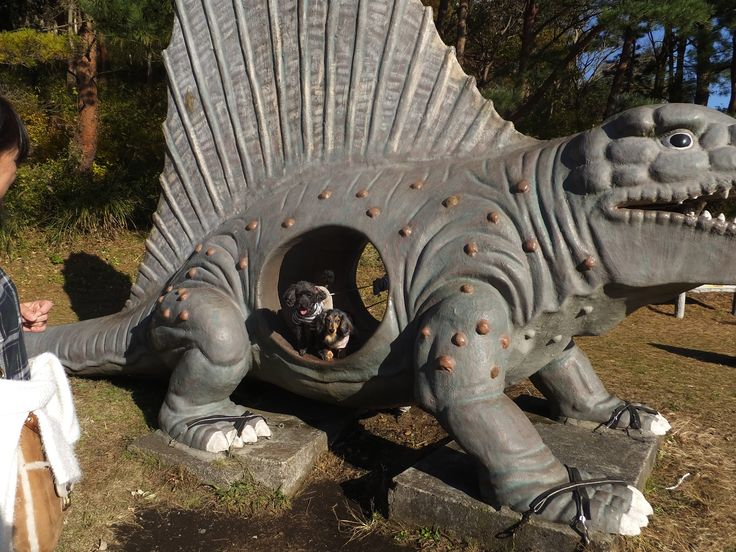 クレオちゃん、シュバルツちゃん/小室山にて/海まで飛んでいけそうな広々とした広場で思いっきり遊んだあと、恐竜さんの口の中で一休み。
