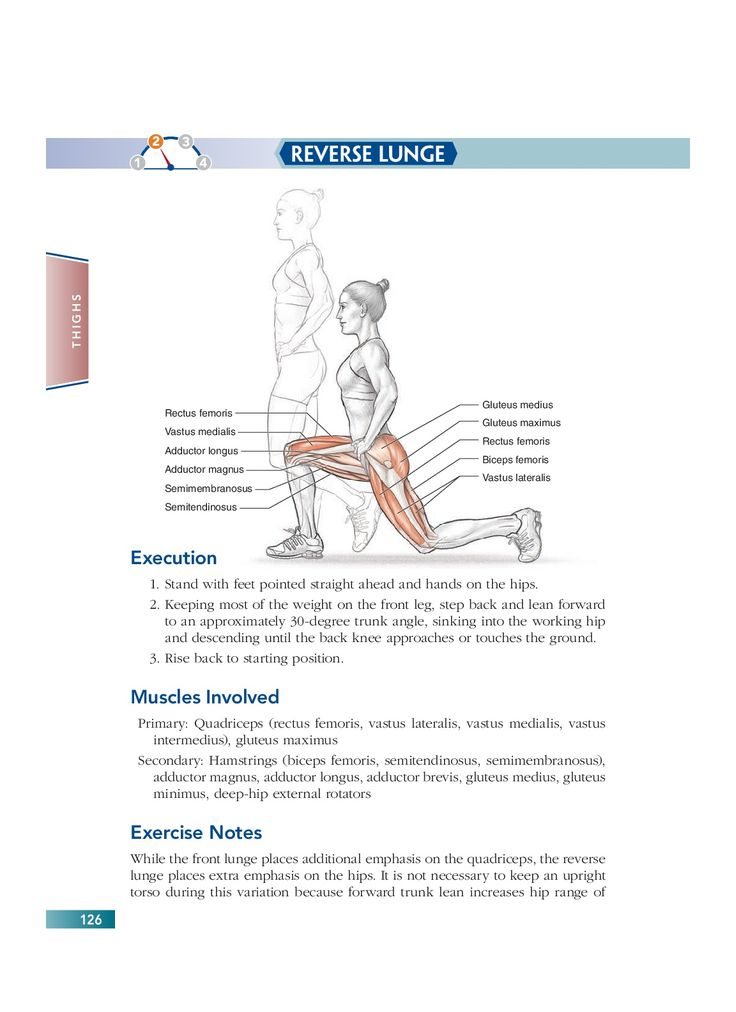 The 138 best Bodyweight Strength Training Anatomy images on ...