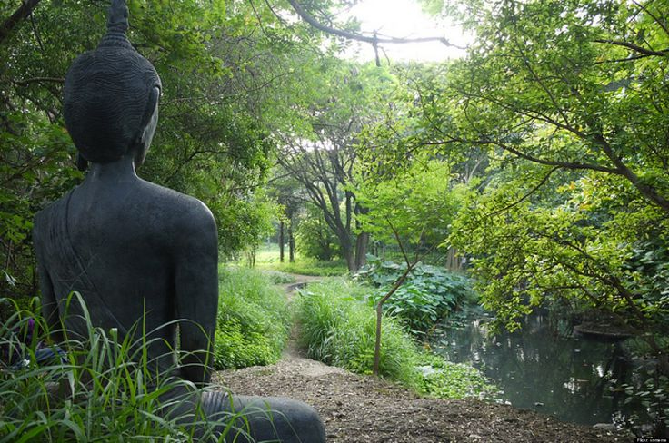 10 Tranquil Yoga  Meditation Retreats In India.. already planning our trip @Gillian Lanyon Bush