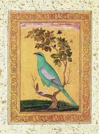 Mughal Bird
