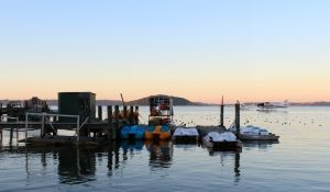 Lake #Rotorua