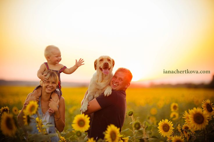 family photo shoot at sunset