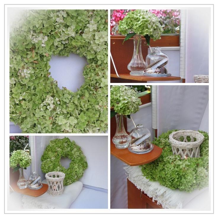 collage hortensia annabelle tuin pinterest hortensia annabelle. Black Bedroom Furniture Sets. Home Design Ideas