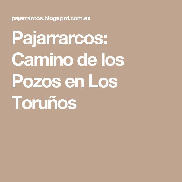 Pajarrarcos: Camino de los Pozos en Los Toruños