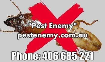 Prompt and Effective #PestControl #Services in #Burwood http://www.redbubble.com/people/pestenemy/works/21830560-prompt-and-effective-pest-control-services-in-burwood