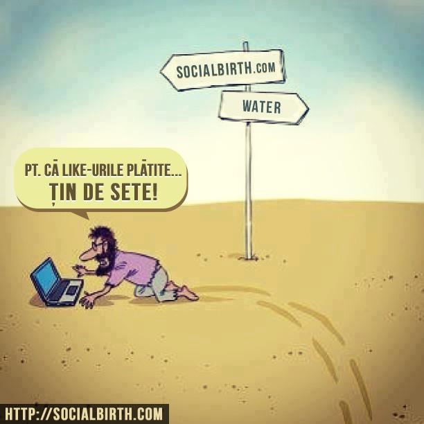 Like-urile platite tin de sete! http://www.socialbirth.com