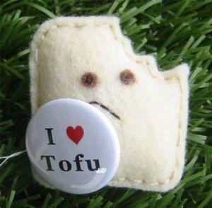 How to...Tofu: Chocolate and Pumpkin-Coconut Pudding