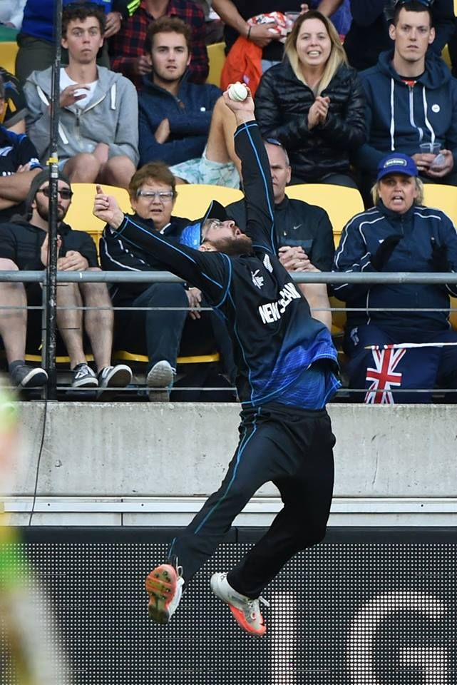 Daniel Vettori takes the catch of the day as Blackcaps beat Windies by  144 runs