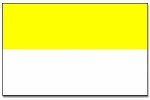 geel / witte vlag polyester 90 x 150 cm  kopen bij www.winkeltjevanjan.nl