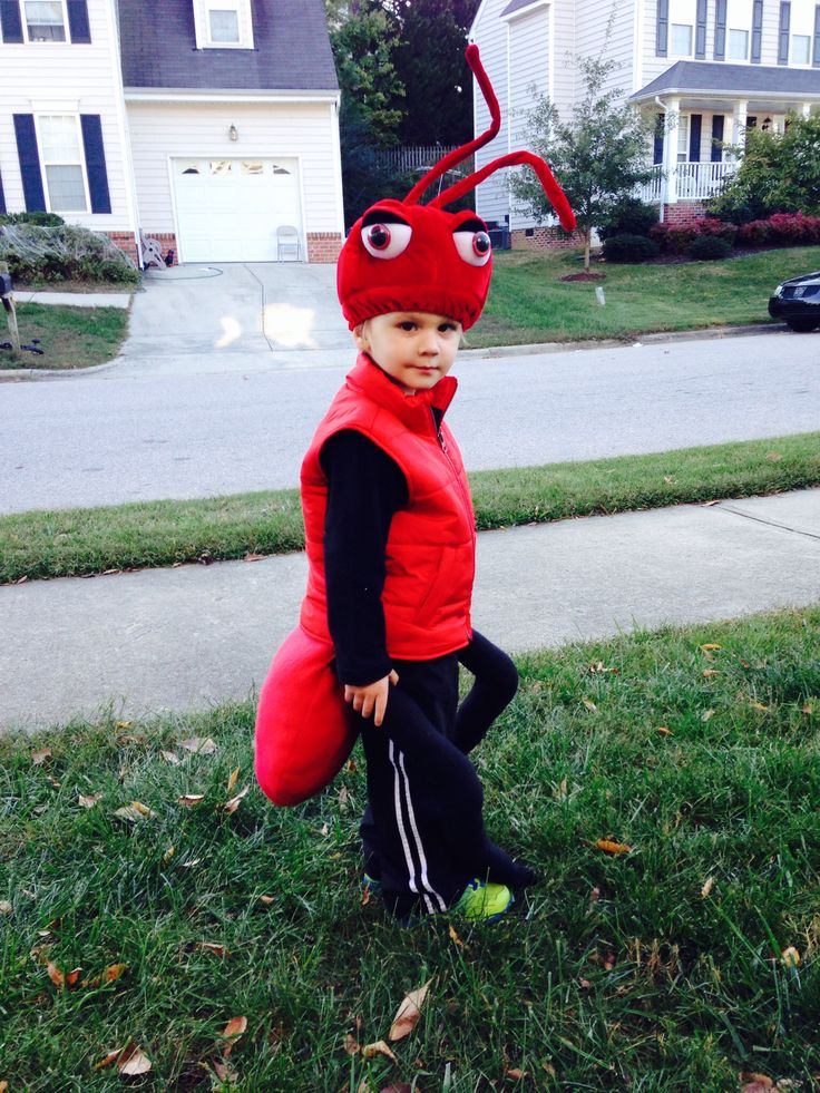 Fire ant costume