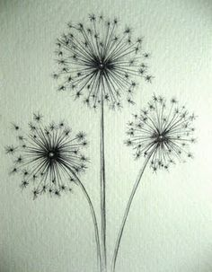 I just like it. And it's meanings. http://www.whats-your-sign.com/symbolic-dandelion-meanings.html