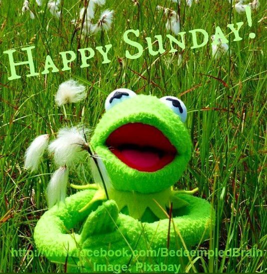 Happy Sunday Morning Wishes
