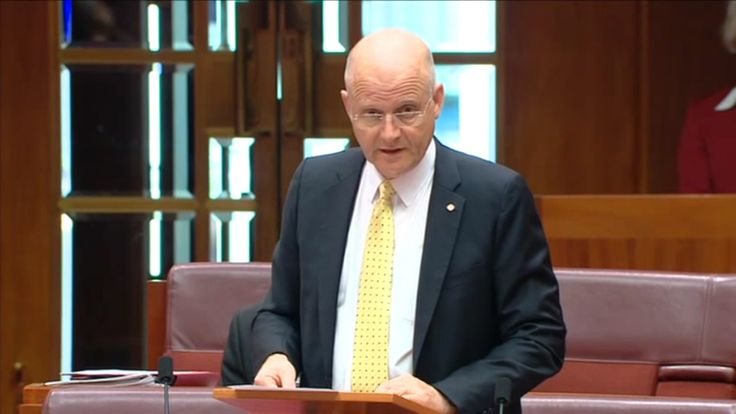 Liberal Democrats Senator David Leyonhjelm says most welfare payments for parents should be abolished.
