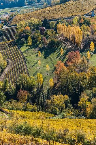Canelli, Monferrato, Piemonte