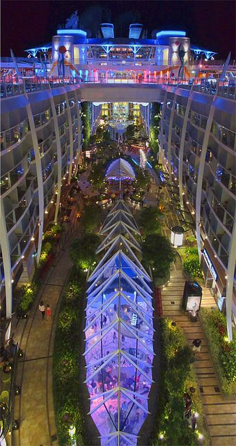Largest cruise ship in the  World!! The Allure of the Seas cruise ship. The garden taken from the 16th deck.    MAGICAL!