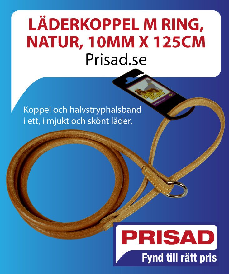 http://prisad.se/laderkoppel-m-ring-natur-10mm-x-125cm.html#.VijR234rLIV