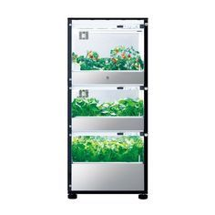This U-ING Green Farm Tri-Tower Hydroponic Grow Box is the largest cultivation unit offered by U-ING. This vertical hydroponic grow box has three sections in two sizes for different types of vegetables making it ideal for growing a real range of produce including lettuce tomatos berries and more. There is a timer so you can have the unit turn off its lighting automatically at night plus a counter shows you how many days you have been cultivating your crop. You can use the germination mode…