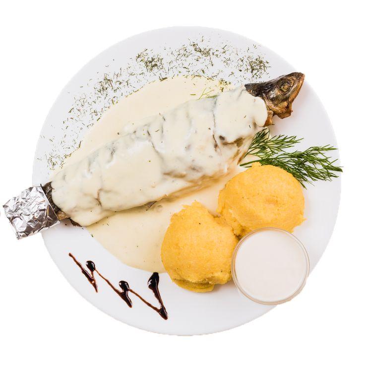 Fish specialties to eat in Radauti at Colieri