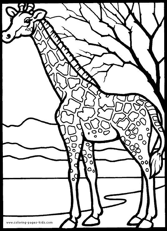 Giraffe Color Page Animal Coloring Pages Color Plate Coloring