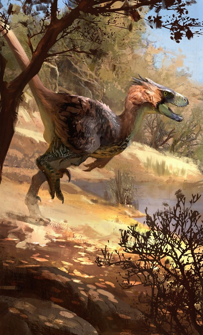 'Adasaurus mongoliensis package art by Jonathan Kuo'