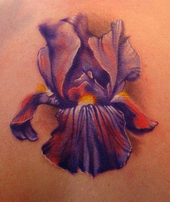 best 25 iris flower tattoos ideas on pinterest iris tattoo colorful flower tattoo and iris. Black Bedroom Furniture Sets. Home Design Ideas