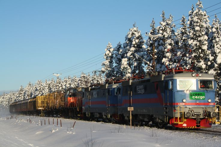 Train from Narvik till Oslo is passing by