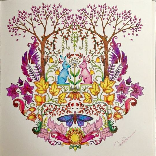 17 Best Images About Coloring Inspiration Johanna Basford