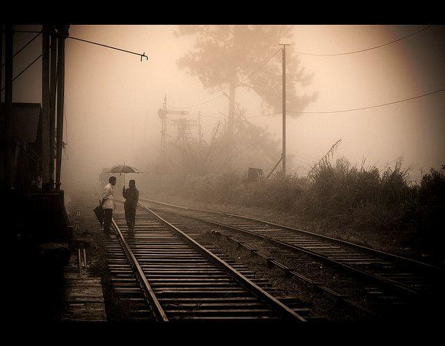 Train tracks | Ervin Bartis Flickr