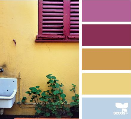 color yard