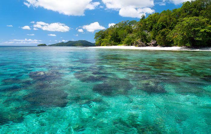 Yenkarom Homestay, Birie Island, Batanta, Raja Ampat  Dugongs, hornbills
