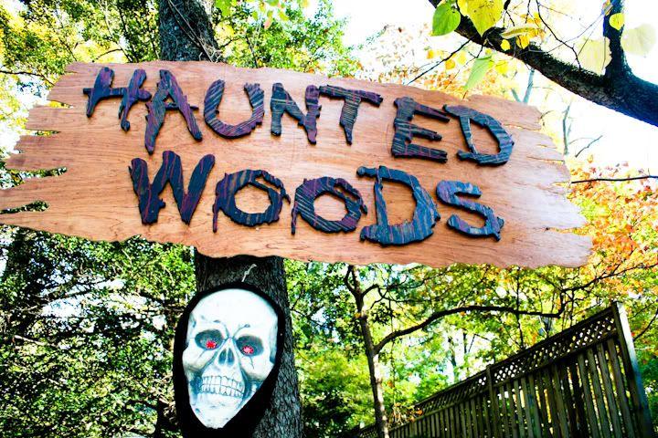 1000 haunted trail ideas on pinterest halloween party for Haunted backyard ideas