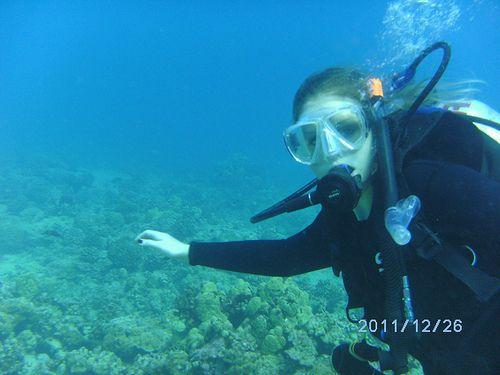 Hawaii SCUBA Diving | December 26, 2011; Discover SCUBA Divi… | Flickr