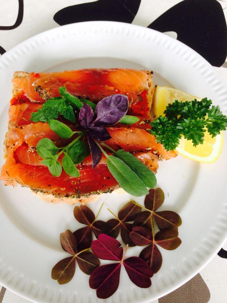 #Grav #lax #salmon #Swedish #style with #coriander seeds, #fennel #seeds, #cumin #seeds, #dried #dill, 2 tbs #raki / #ozo/ #akvavit #served with a #toast and herbs parsley, mint, #sage, #red #wood #sorell, purple basil and lemon