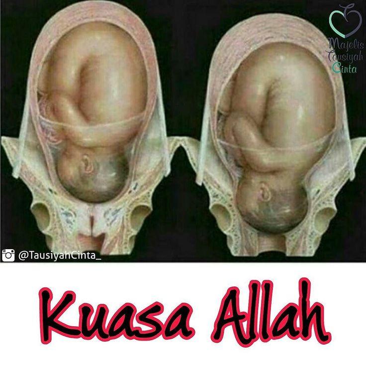 IBU...sungguh dirimu sangat kuat dan tangguh... .  MasyaAllah ... Tubuh seorang manusia hanya dapat menahan 45 del (unit) dari rasa sakit. Tetapi ketika sedang melahirkan seorang wanita merasakan sekitar 57 del (unit) dari rasa sakit. Hal ini serupa dengan sekitar 20 tulang mengalami retak di waktu yang sama. .  Follow @FiqihWanitaId  Follow @FiqihWanitaId  Follow @FiqihWanitaId  .  MasyaAllah begitu Besar Pengorbanan Ibu Untuk Kita dan Karena itulah mereka begitu menyayangi Kita  . .  #Tag…