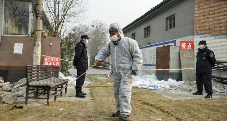 #South Korea confirms H5N6 bird flu at duck farm - Channel NewsAsia: Channel NewsAsia South Korea confirms H5N6 bird flu at duck farm…
