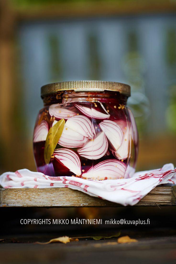 Red onion. Punasipuli.