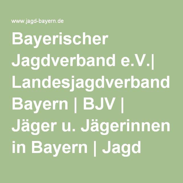 Bayerischer Jagdverband e.V.| Landesjagdverband Bayern | BJV | Jäger u. Jägerinnen in Bayern | Jagd Jagdpraxis Jagdwesen