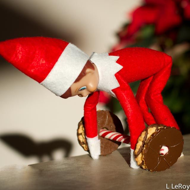 Elf lifting weights made of cookies on a peppermint stick.